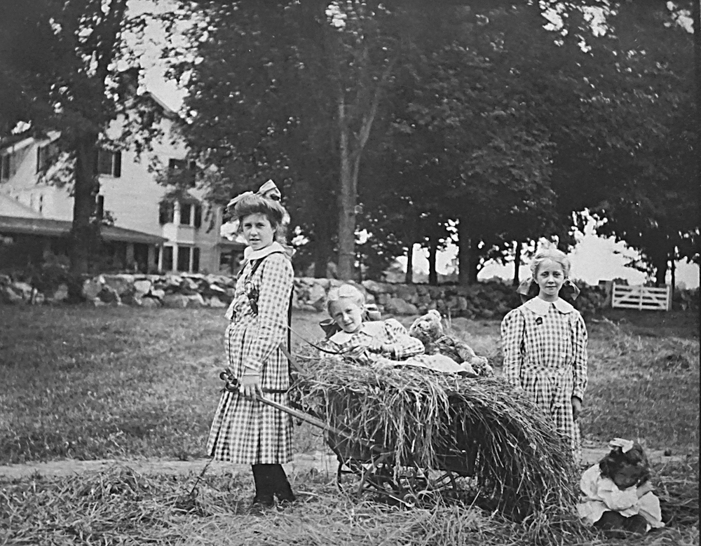 Wellington girls in field with a wheelbarrow full of hay