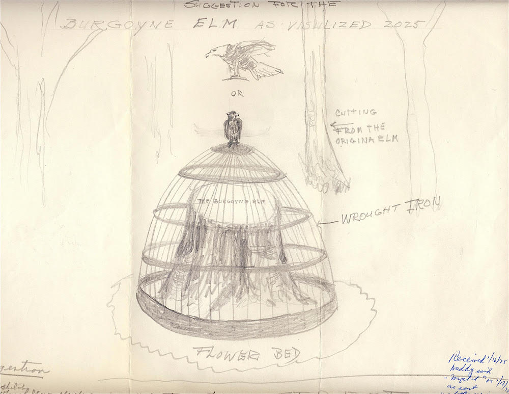 pencil drawing of a domed cage around the bole, topped with an eagle